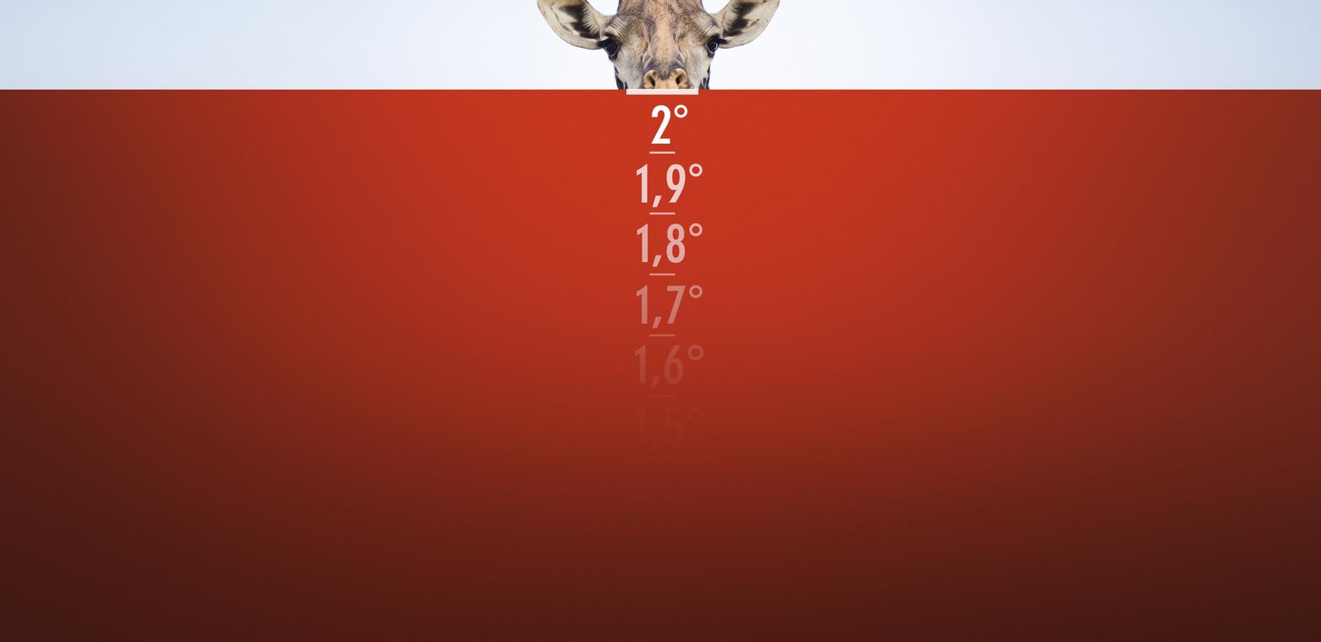 wwf-giraffe-elephant-polar-bear-print-37