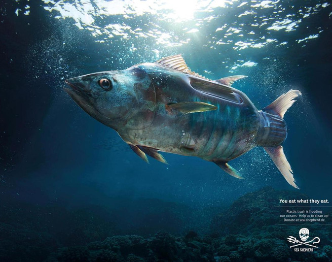 ob_9a331a_plastic-fish-sea-shepherd-plus