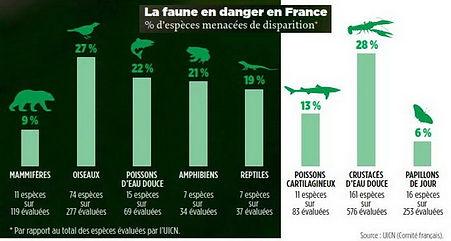 La faune en danger en France.jpg