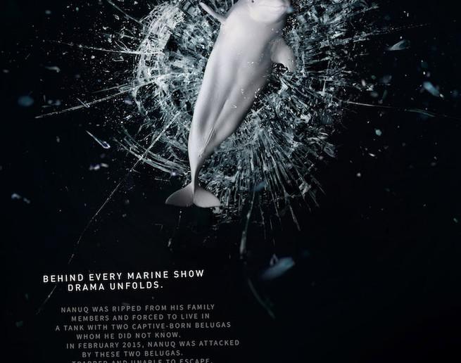 Sea-Shepherd-Conservation-Society-Nanuq-