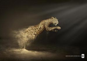WWF publicite leopard.jpg