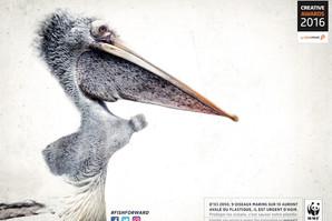 WWF no plastic.jpg