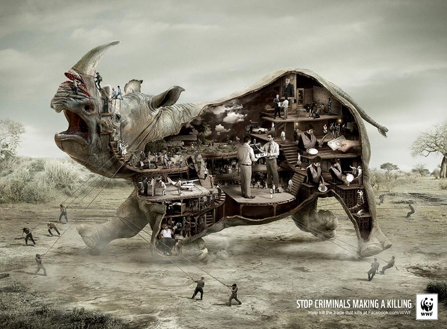 WWF-campagne-pub-choc-rhinoceros.jpg