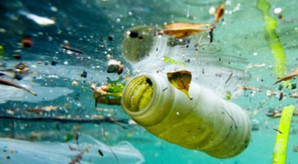 Pollution marine mangez du plastic