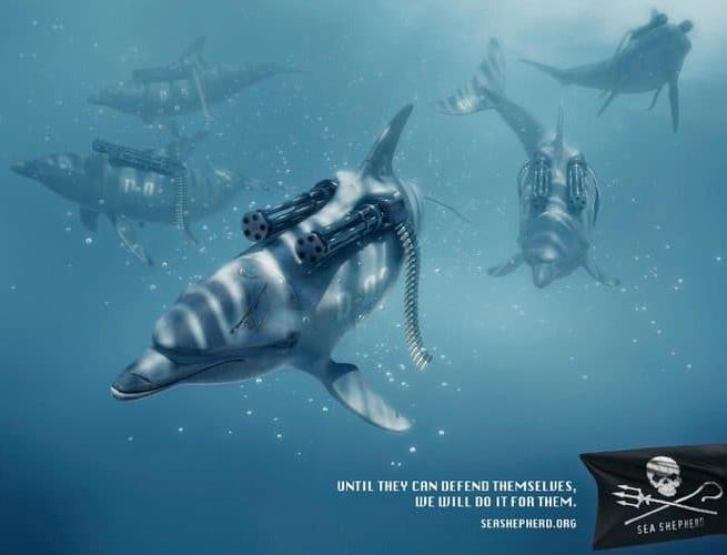 sea-shepherd-ocean-e1533931354989.jpg