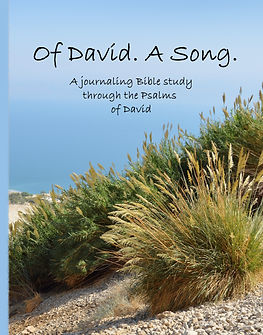 David Cover 3 front.jpg