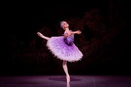 VALERIE TERESHCHENKO KL62-Lilac Fairy, S
