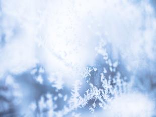 תזונה מותאמת לעונת החורף