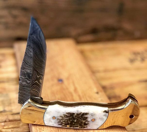 Deer Stage Horn Pocket Knife