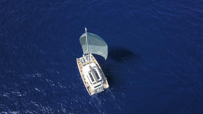 code-zero-yachts61jpeg