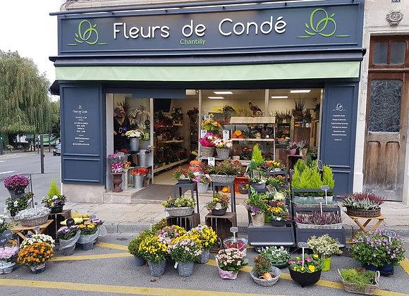 Fleurs de Condé - Fleuriste à Chantilly