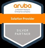 Aruba Silver Partner Touchline