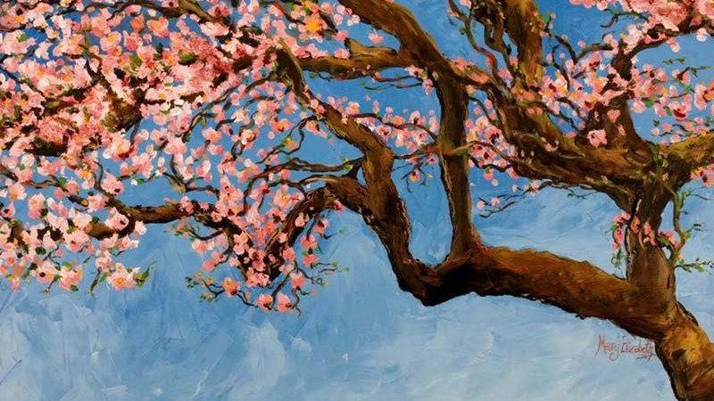 Cherry Tree : Greeting Card