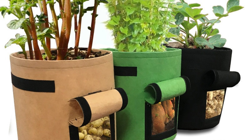 Home Indoor Garden Breathable Potato Tomato Vegetable