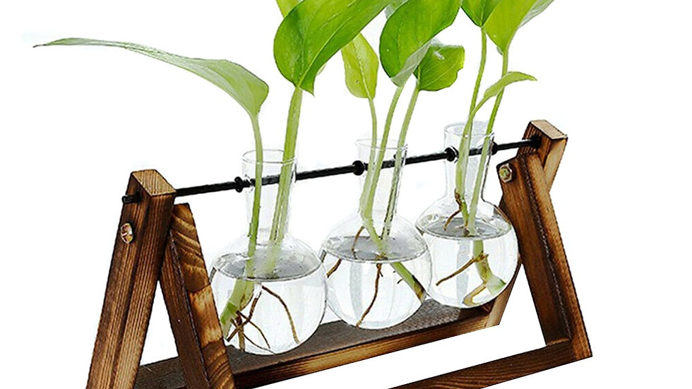 Hydroponic Glass Planter Bulb Vase With Wooden Stand