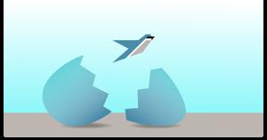 BlueByrd Strategic Sales & Marketing takes flight