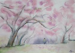 桜花に憩う