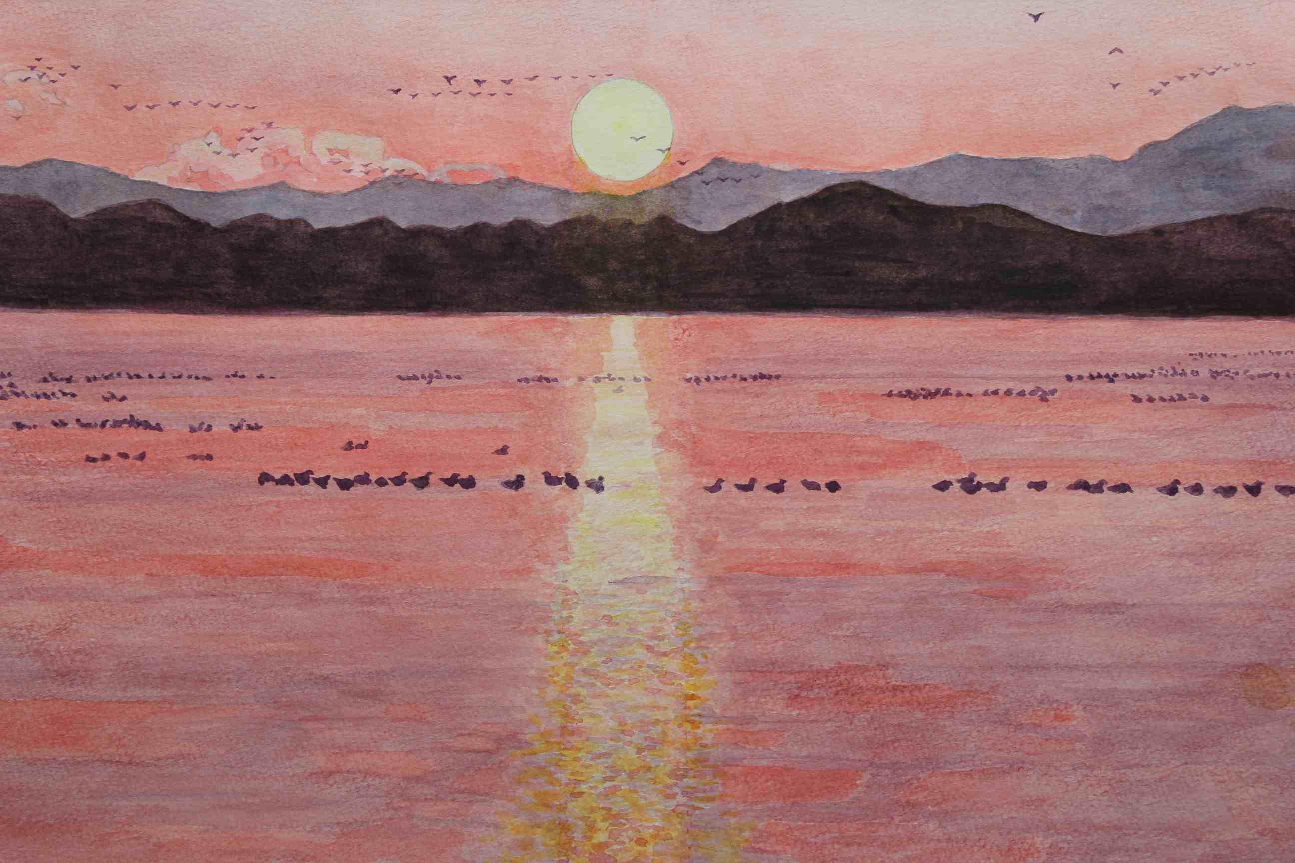 伊豆沼の朝日
