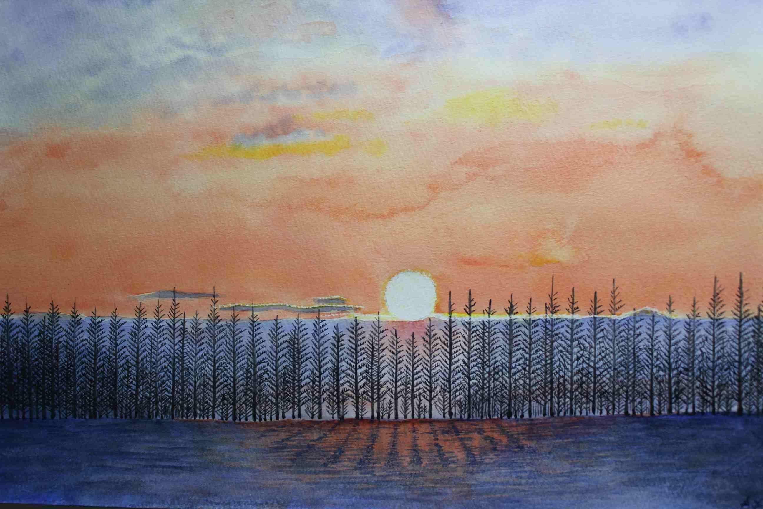 カラマツ林の落日