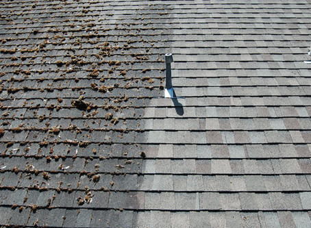** Residential Roof Washing **