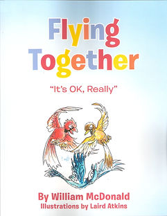 "Flying Together ""It's OK, Really"""