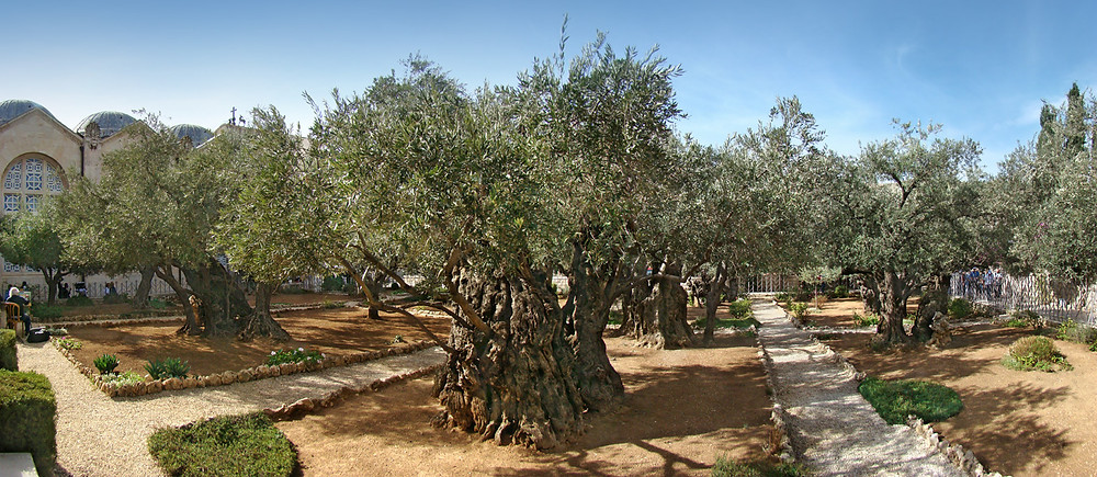 Traditional Location of the Garden of Gethsemane