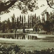 Zwembad-in-vroegere-tuin-1024x701.jpg