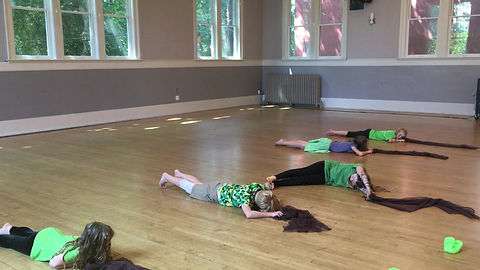 A dance choreographed by campers, inspired by the strength and patterns of tree bark