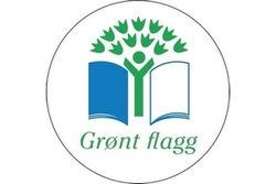 grønt_flagg.jpg