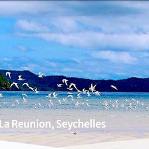 The Vanilla Islands at NxSE 2020
