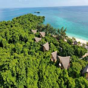 Celebrating 30 Years Since the Discovery of Chumbe Island in East Africa