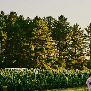 Here's to Outdoor Fun in Québec's Eastern Townships