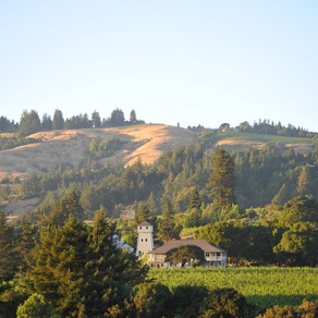 What's in a Visit to Mendocino Wine Country?