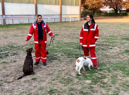 Rettungshunde am EG