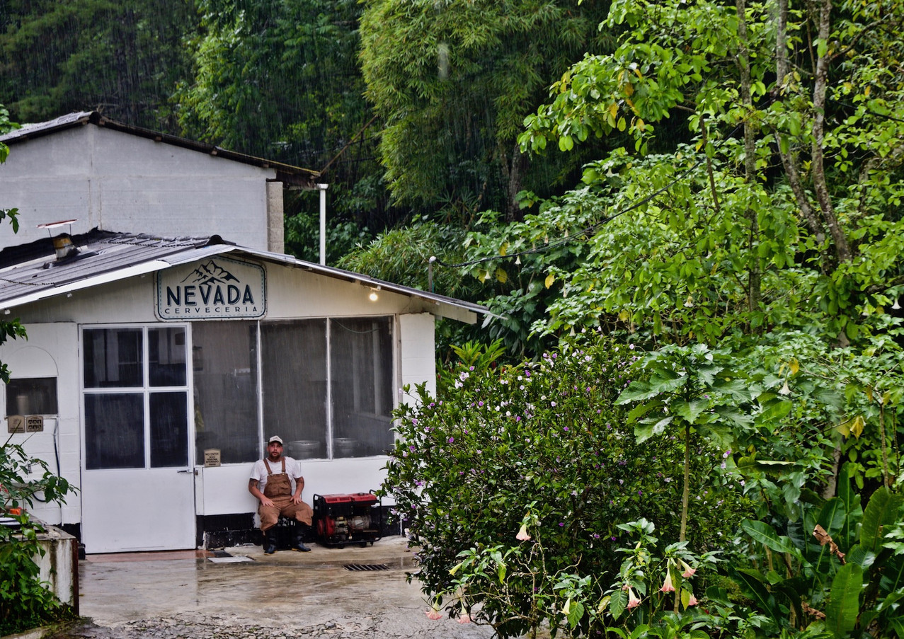 Coffeefarm.jpg