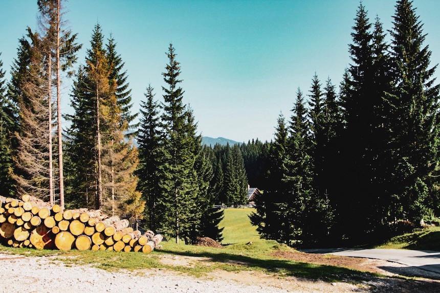 RoadtripSlovenië.jpg