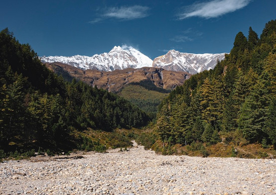 Nepalvergezicht.jpg