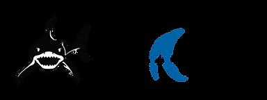 SHARK logo+Text long color.png