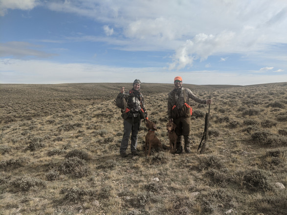 Our first Sage Grouse!