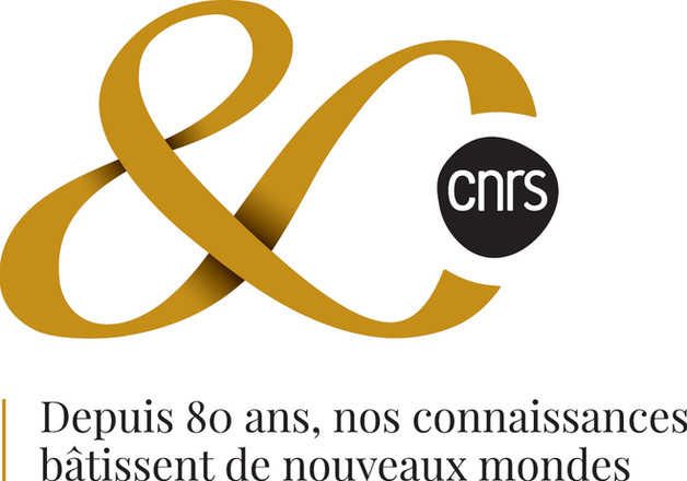 logoCNRS_80ans.jpg