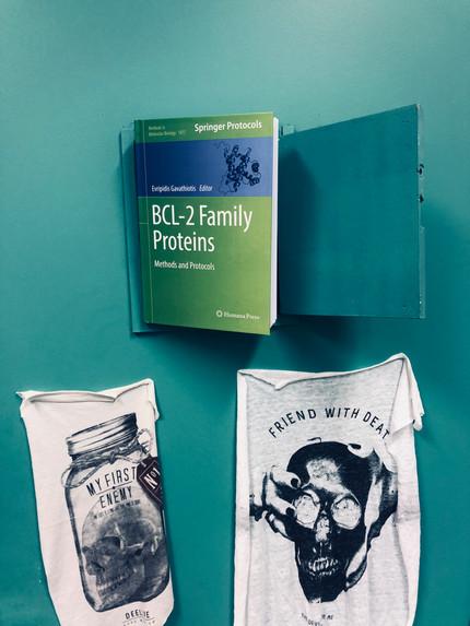Ouvrage collectif sur les protéines de la famille BCL-2