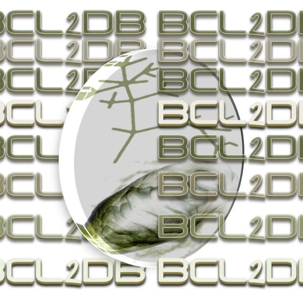logo_BCL2DB.jpg