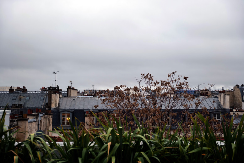 Les toits de Paris depuis le CRI