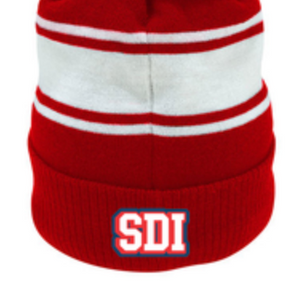 Red Winter Hat.png
