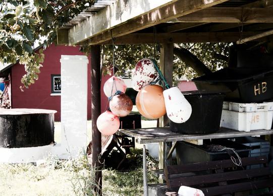 """Fotoserie fra """"Stemmer På Fyn"""". En fynsk folkemindeindsamling på lyd, og et projekt med særligt fokus på fynske dialekter, fynsk identitet, lokalforankret kærlighed og levet liv. Projektet tog sin begyndelse under MOD.STRØM Festival i september, 2017. Billederne er fra Ærø, Langeland, Svendborg, Nyborg, Odense og Langeskov kommune. Web: www.stemmerpaafyn.dk"""