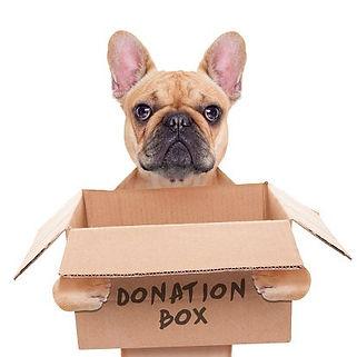 Donazione Canile Sanitario di Bari