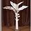 Thumbnail: White Banana Palm -3ft.