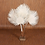 Thumbnail: White Buri Palm- 3 ft.