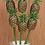 Thumbnail: Pineapple Stems