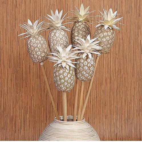 Pineapple Stems